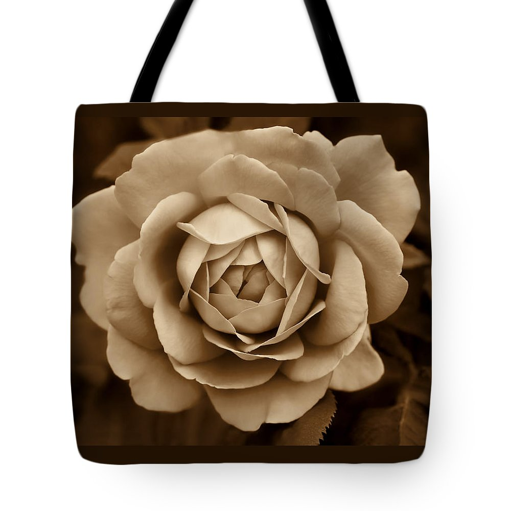Rose Tote Bag featuring the photograph The Antique Rose Flower by Jennie Marie Schell