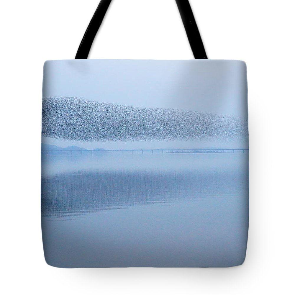 Scenics Tote Bag featuring the photograph The Baikal Teals by Penboy