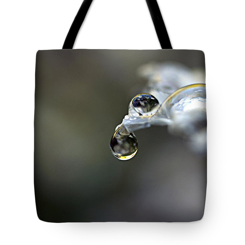Dew Tote Bag featuring the photograph The Balance by Joe Schofield