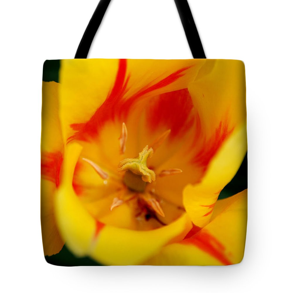 Tulip Tote Bag featuring the photograph The Beauty Inside by Jennifer Ancker