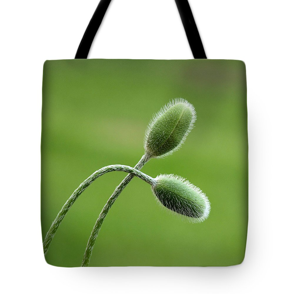 The Beauty Within Tote Bag featuring the photograph The Beauty Within by Tom Druin