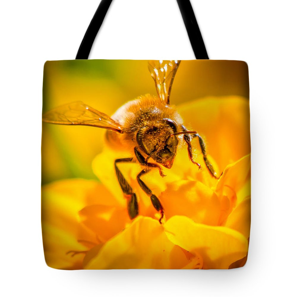 Bees Tote Bag featuring the photograph The Bee Gets Its Pollen by Bob Orsillo