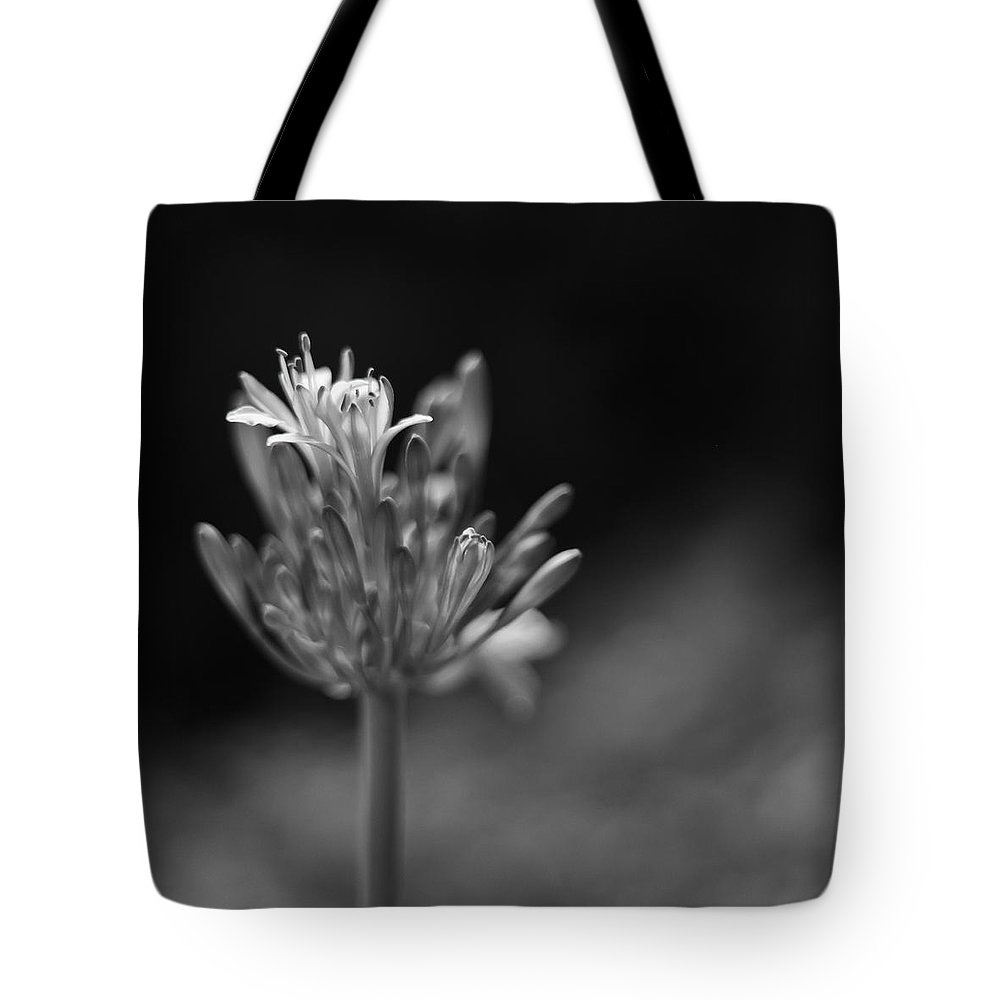 Black And White Tote Bag featuring the photograph The Beginning Of Something Good by Robin Konarz