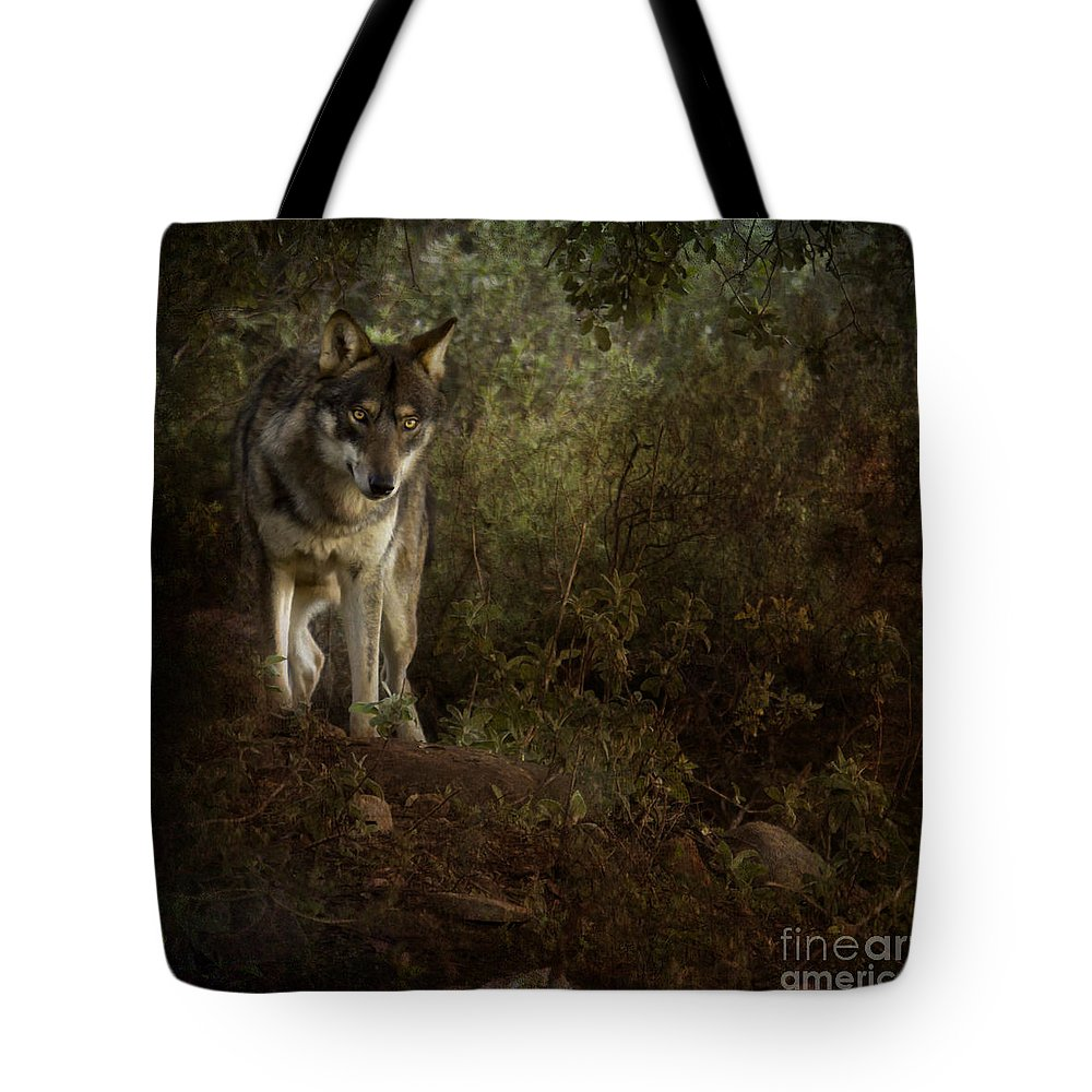 Wolf Tote Bag featuring the photograph The Big And Not Too Bad Wolf by Angel Ciesniarska