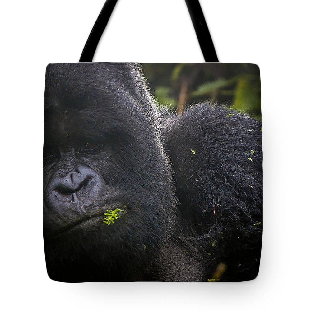 Rwanda Tote Bag featuring the photograph The Big Guy by Paul Weaver