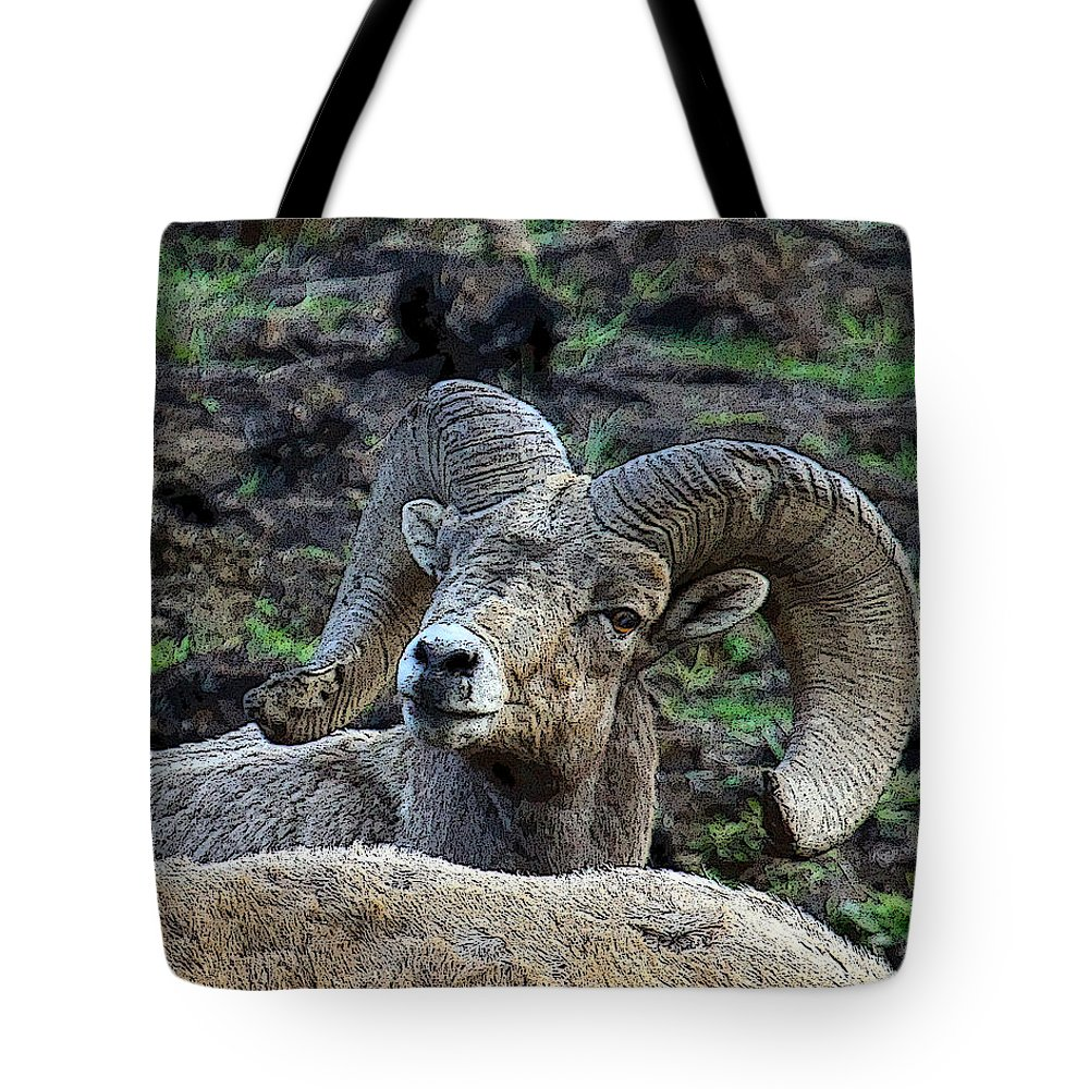 Bighorn Sheep Tote Bag featuring the photograph The Bighorn by Steve McKinzie