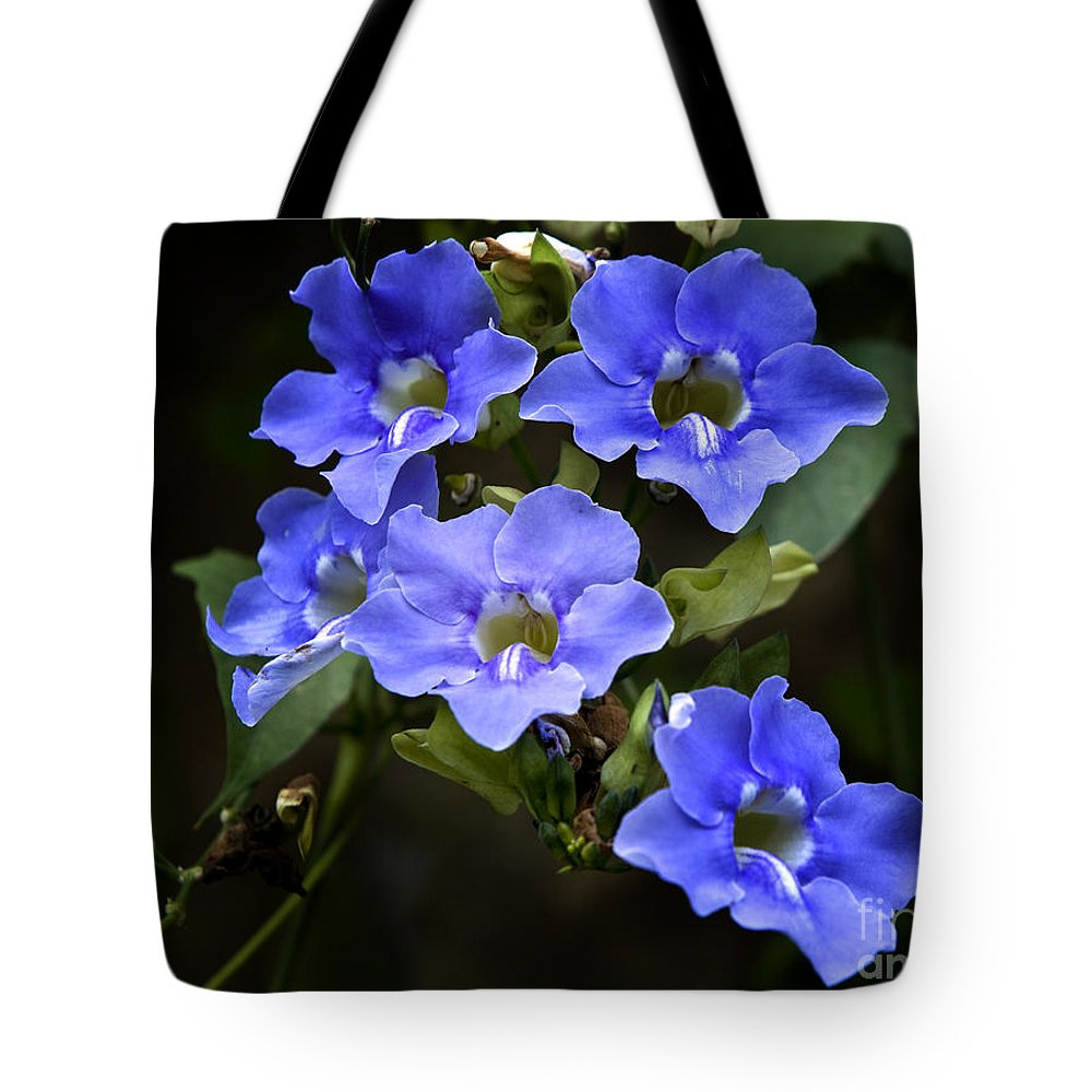 Floral Tote Bag featuring the photograph The Blues by David Millenheft