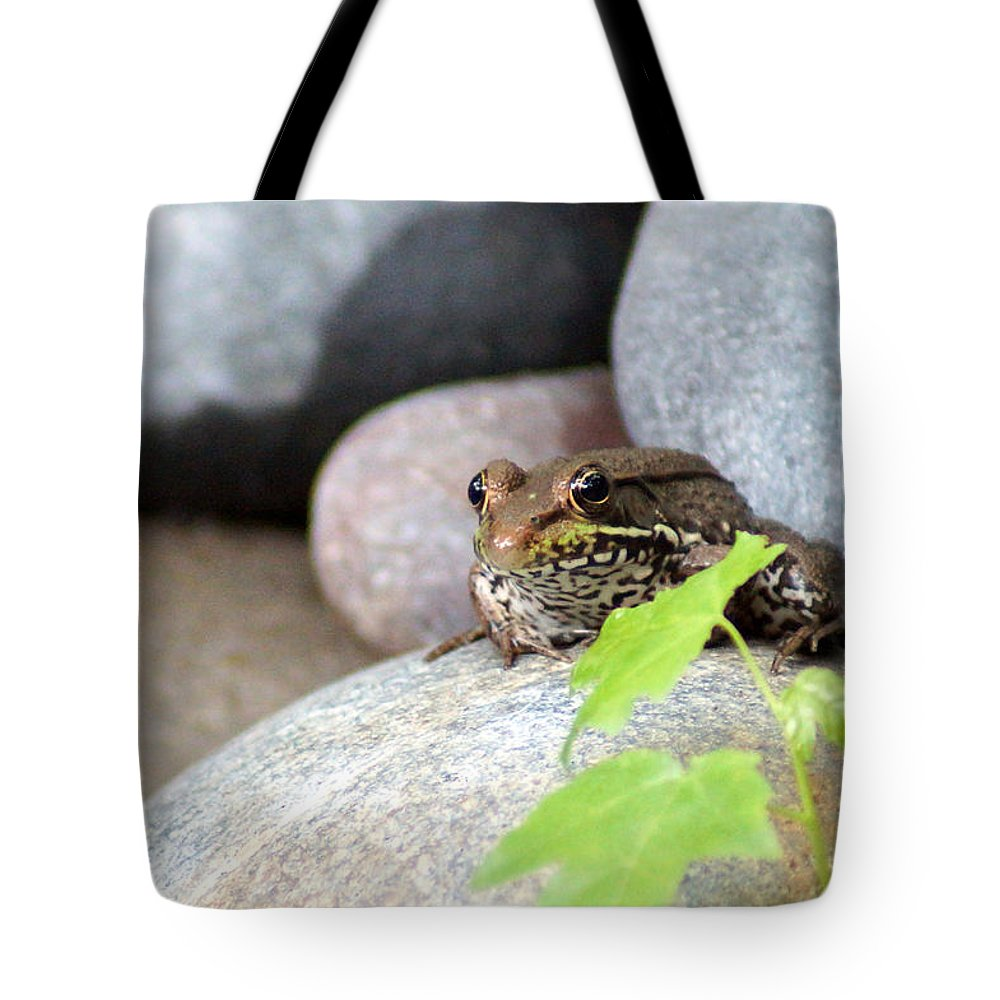 The Bronze Frog Tote Bag featuring the photograph The Bronze Frog by Kim Pate