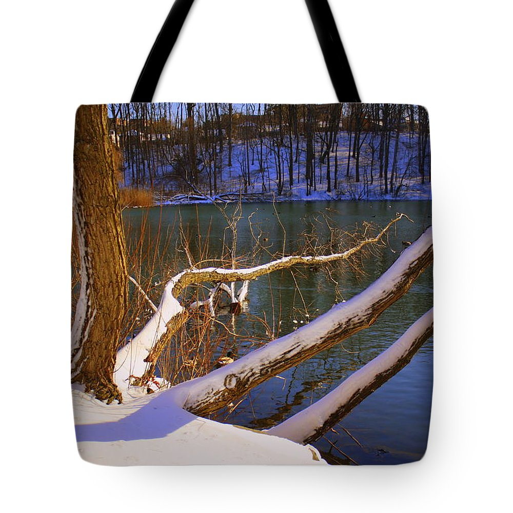 Winter Tote Bag featuring the photograph The Calm After The Storm by Dora Sofia Caputo Photographic Design and Fine Art