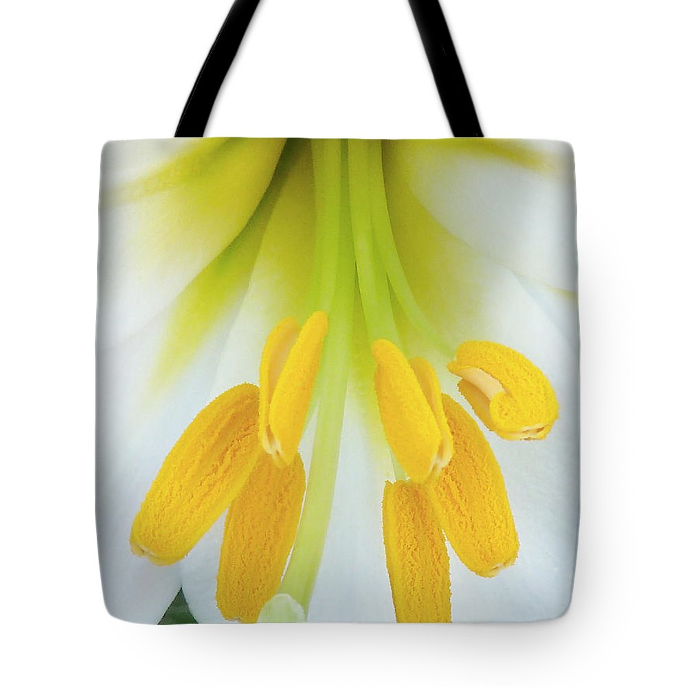 Christmas Tote Bag featuring the photograph The Christmas Lilly by Steve Taylor