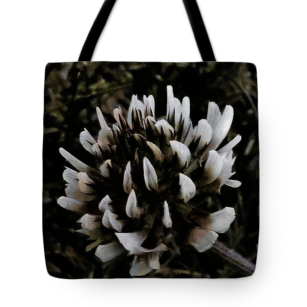 Dark Tote Bag featuring the photograph The Clover Flower by Steve Taylor