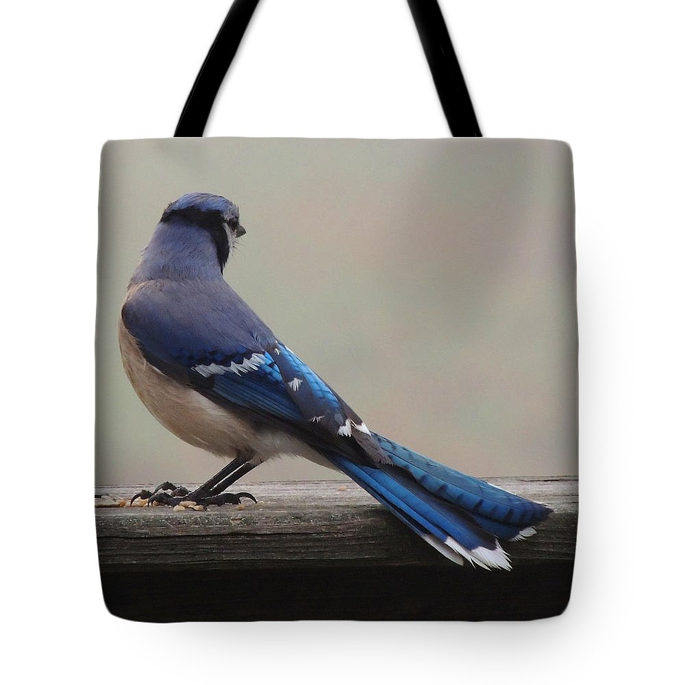 Bluejay Tote Bag featuring the photograph The Cold Shoulder by Mim White