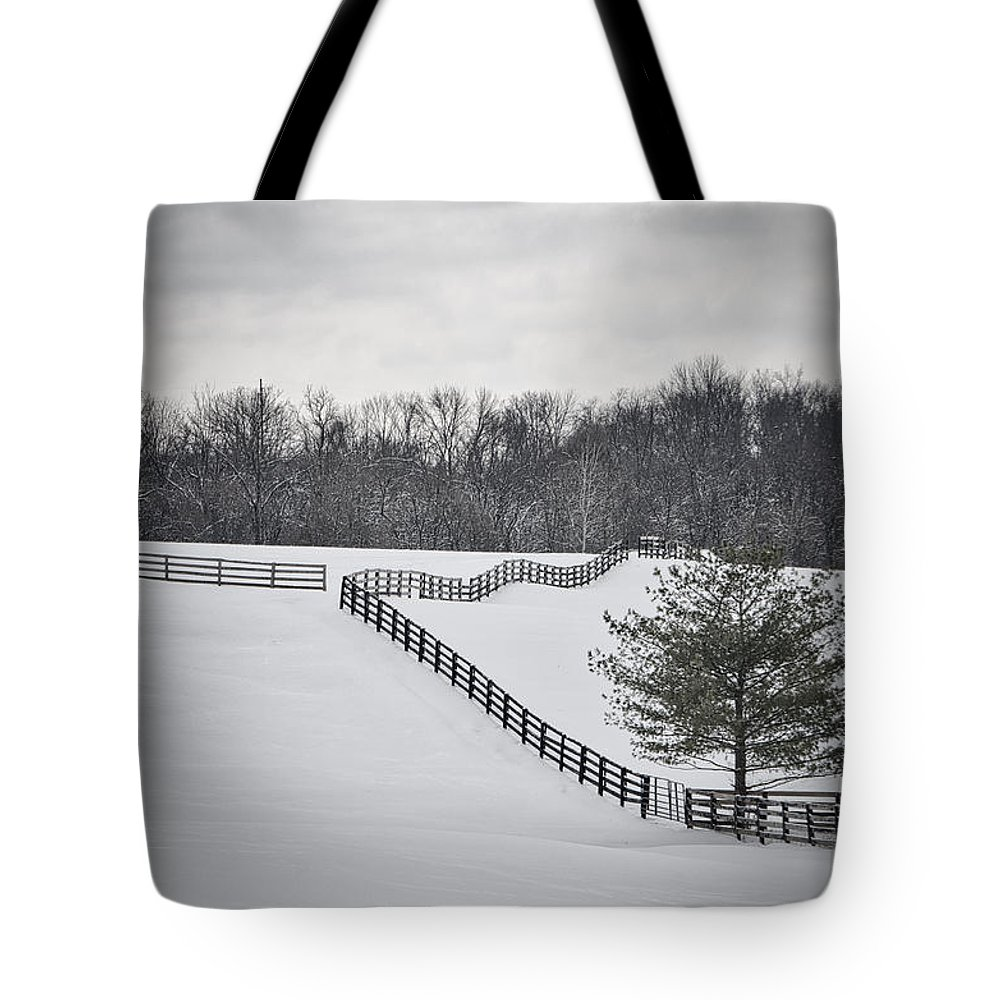 Beautiful Tote Bag featuring the photograph The Color Of Winter - Bw by Mary Carol Story