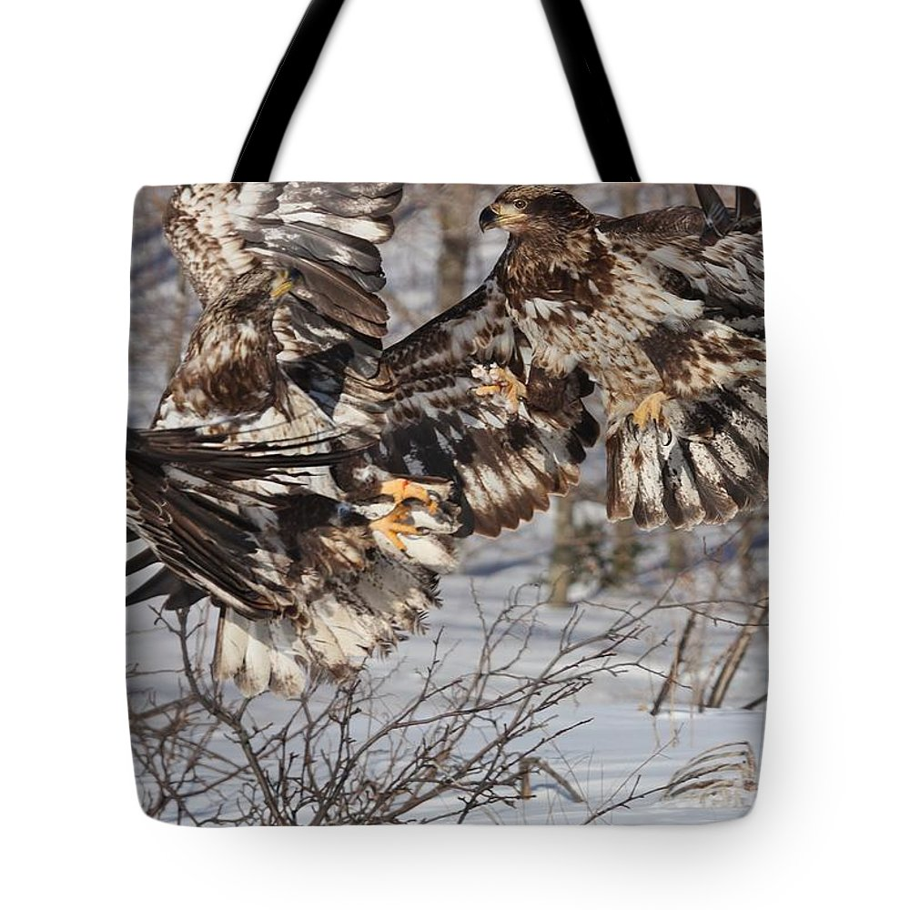 Bald Eagles Tote Bag featuring the photograph The Conflict by Teresa McGill