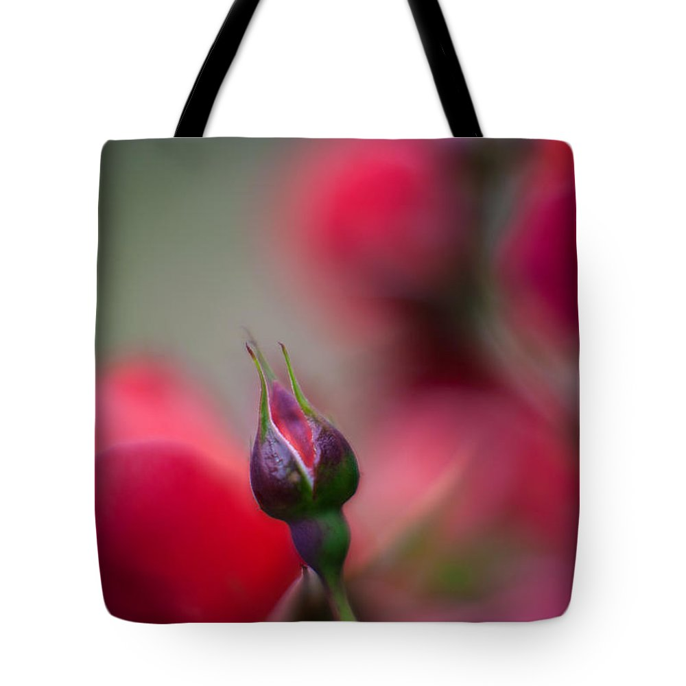 Rose Tote Bag featuring the photograph The Curve And The Tip by Mike Reid