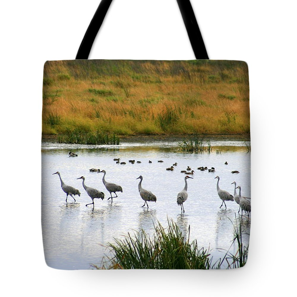 Nature Tote Bag featuring the photograph The Dance Of The Sandhill Cranes by Kay Novy