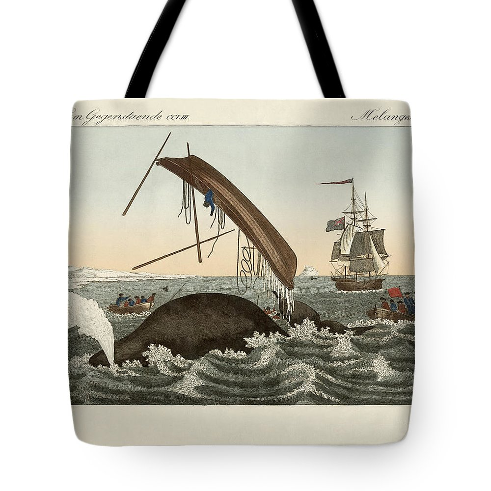 Bertuch Tote Bag featuring the drawing The Dangers Of Whale Fishing by Splendid Art Prints