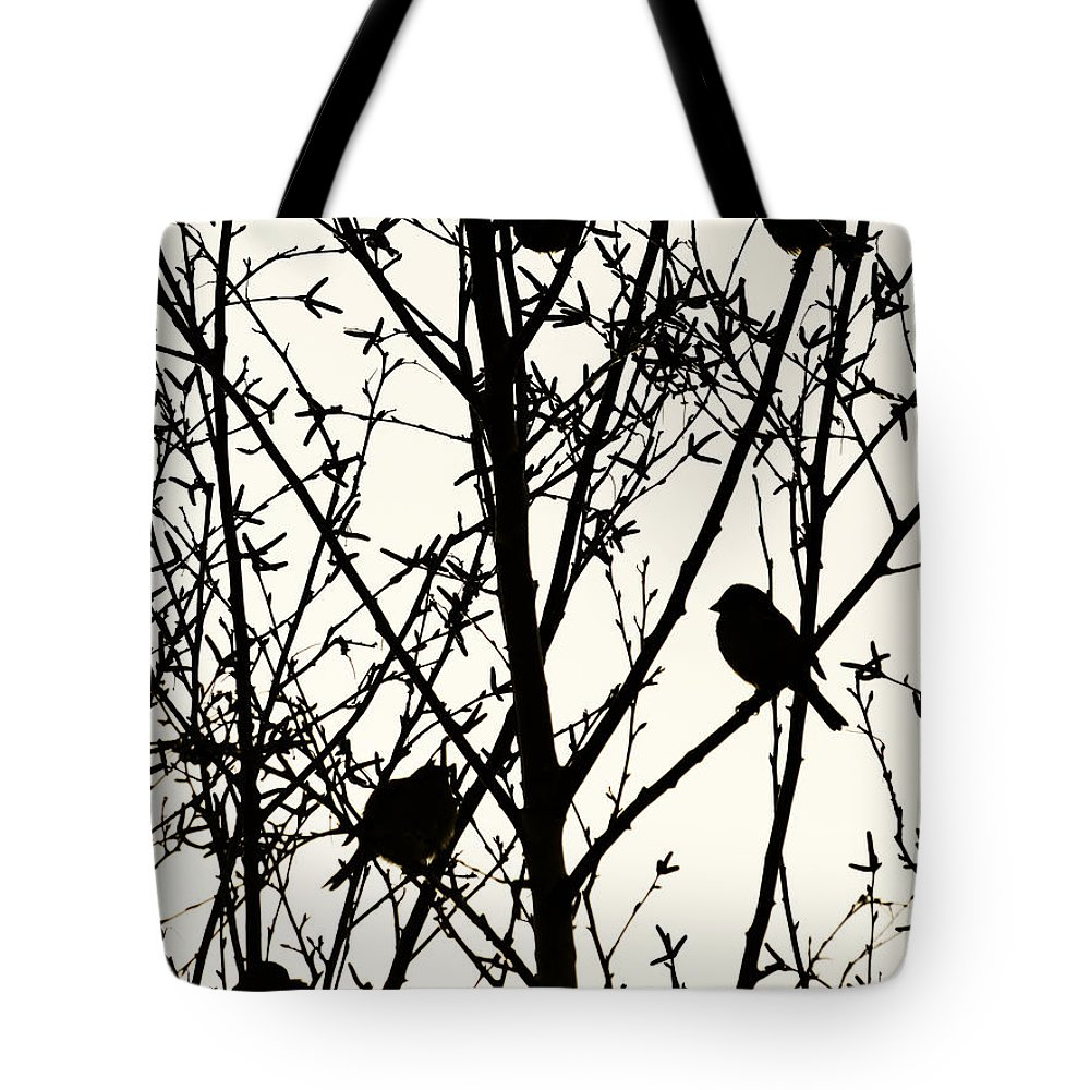 Bird Tote Bag featuring the photograph The Dinner Queue by Steve Taylor