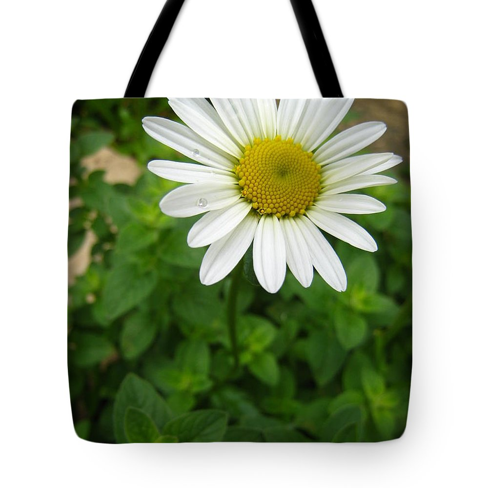 Daisy Tote Bag featuring the photograph Natures Tear Drops by Jennifer E Doll