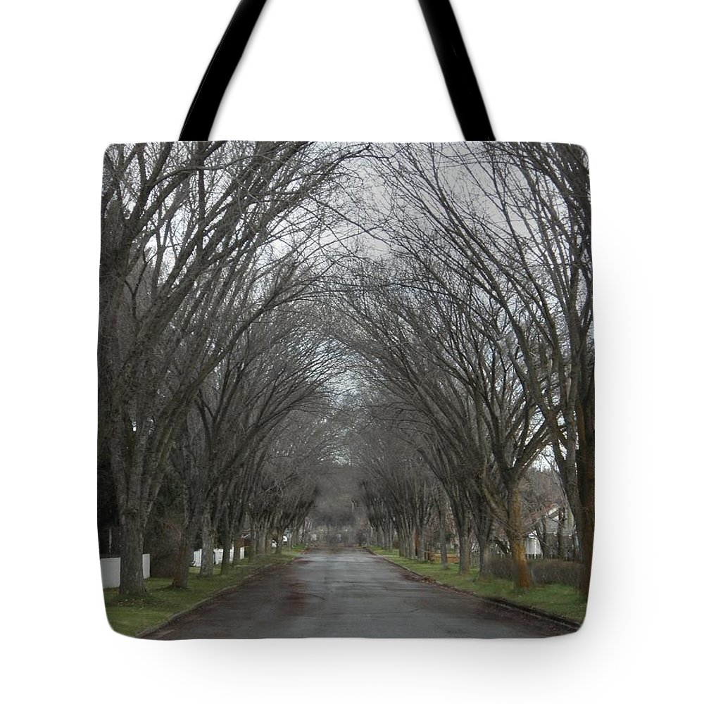 Elm Tote Bag featuring the photograph The Elm Arch by Vivian Martin