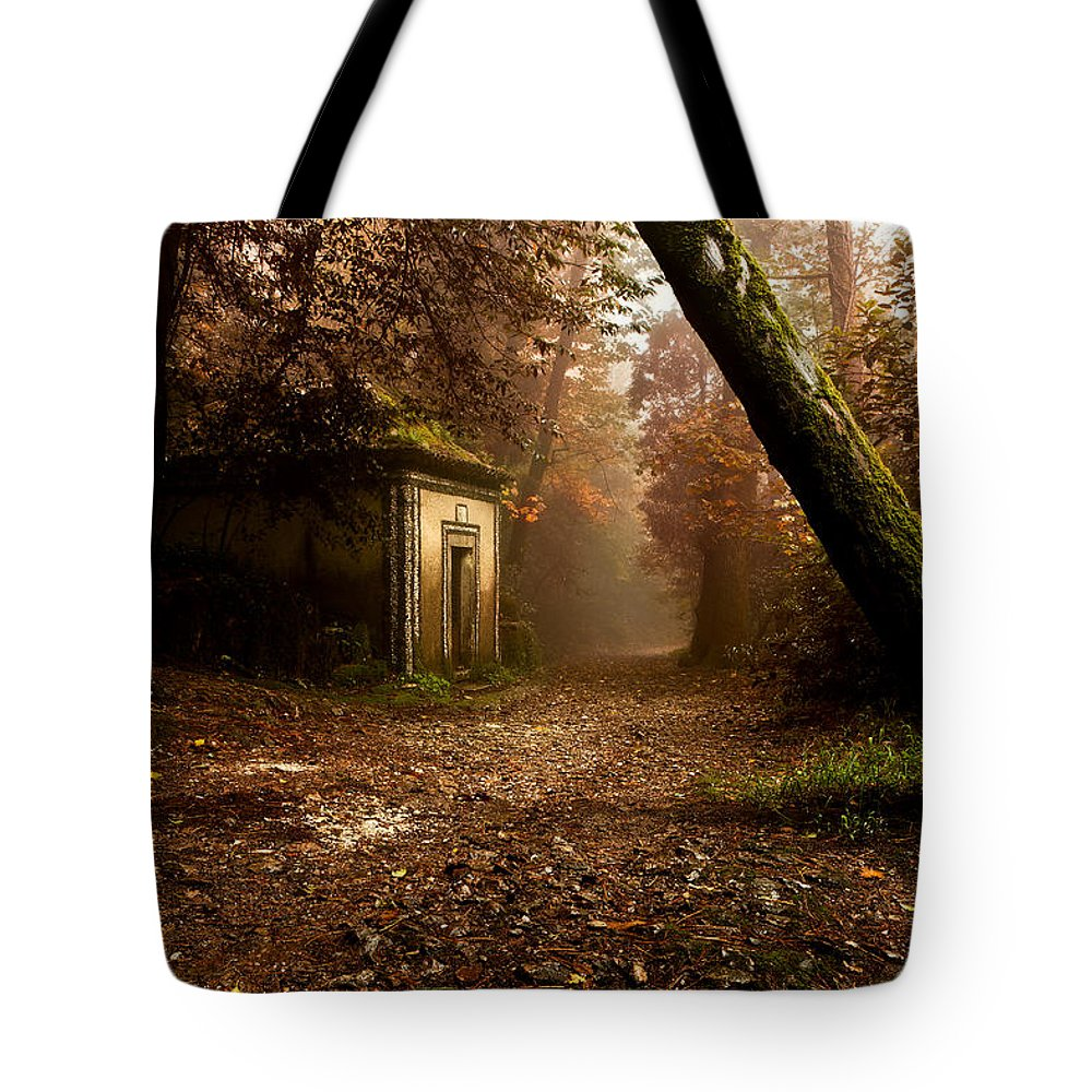 Mood Tote Bag featuring the photograph The Enchanted Trail by Jorge Maia