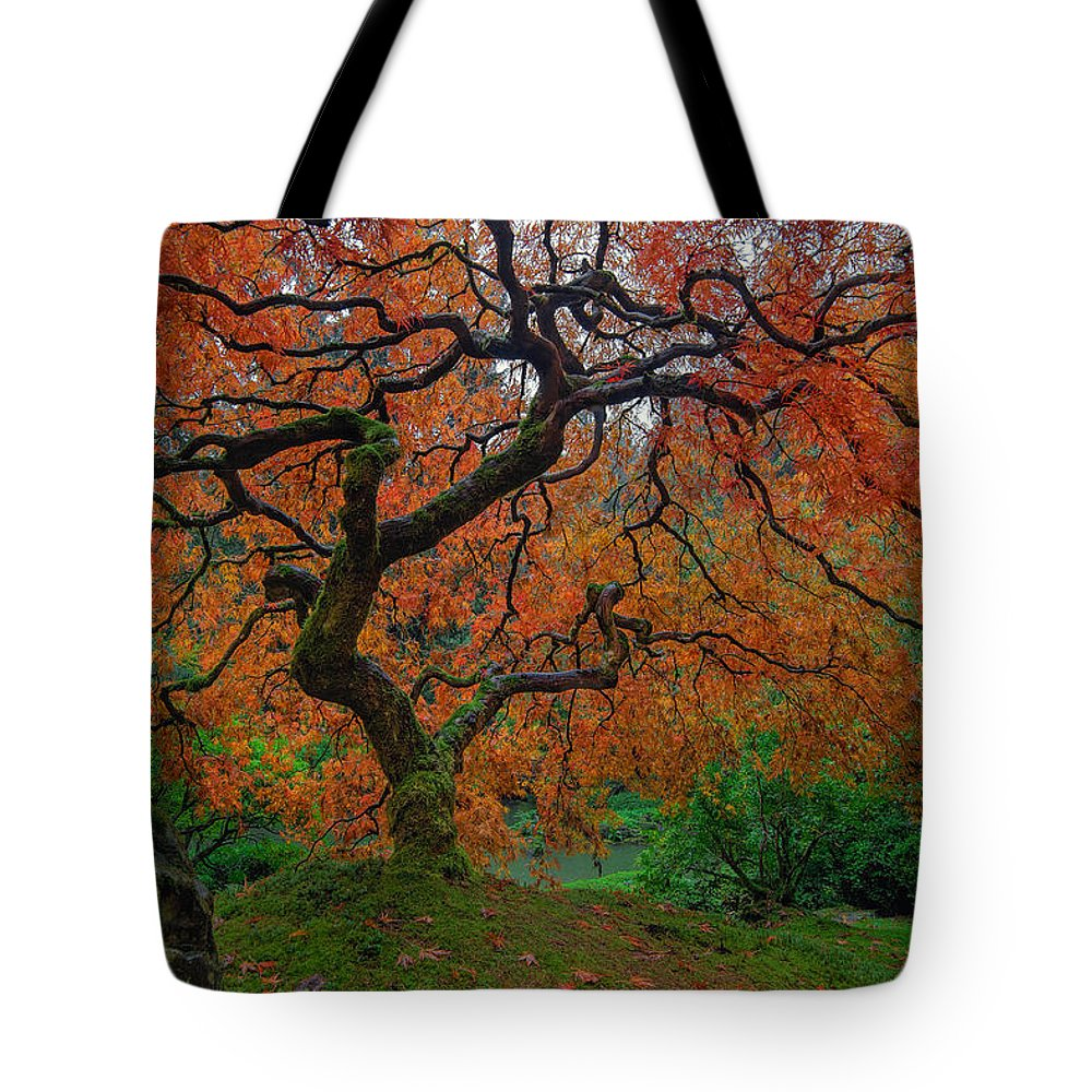 Portland Japanese Garden Tote Bag featuring the photograph The Famous Tree At Portland Japanese Garden by David Gn