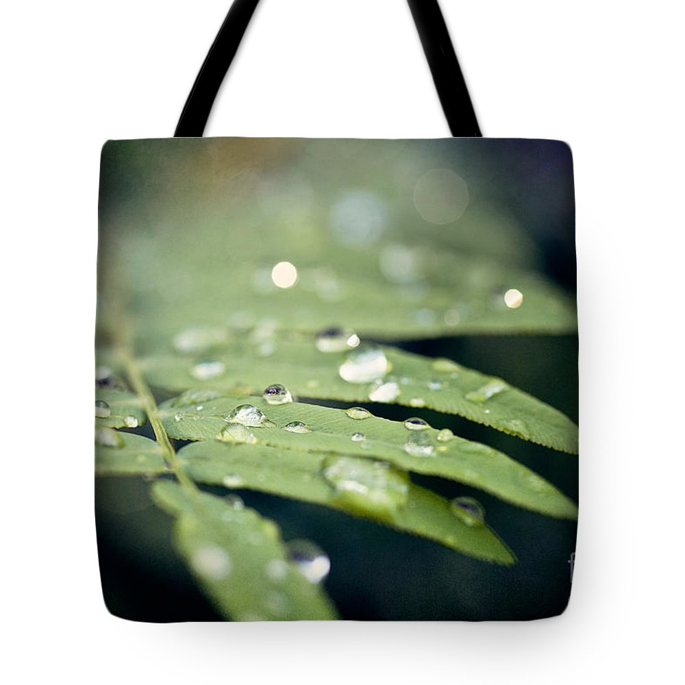 Green Tote Bag featuring the photograph The Fern by Erin Johnson