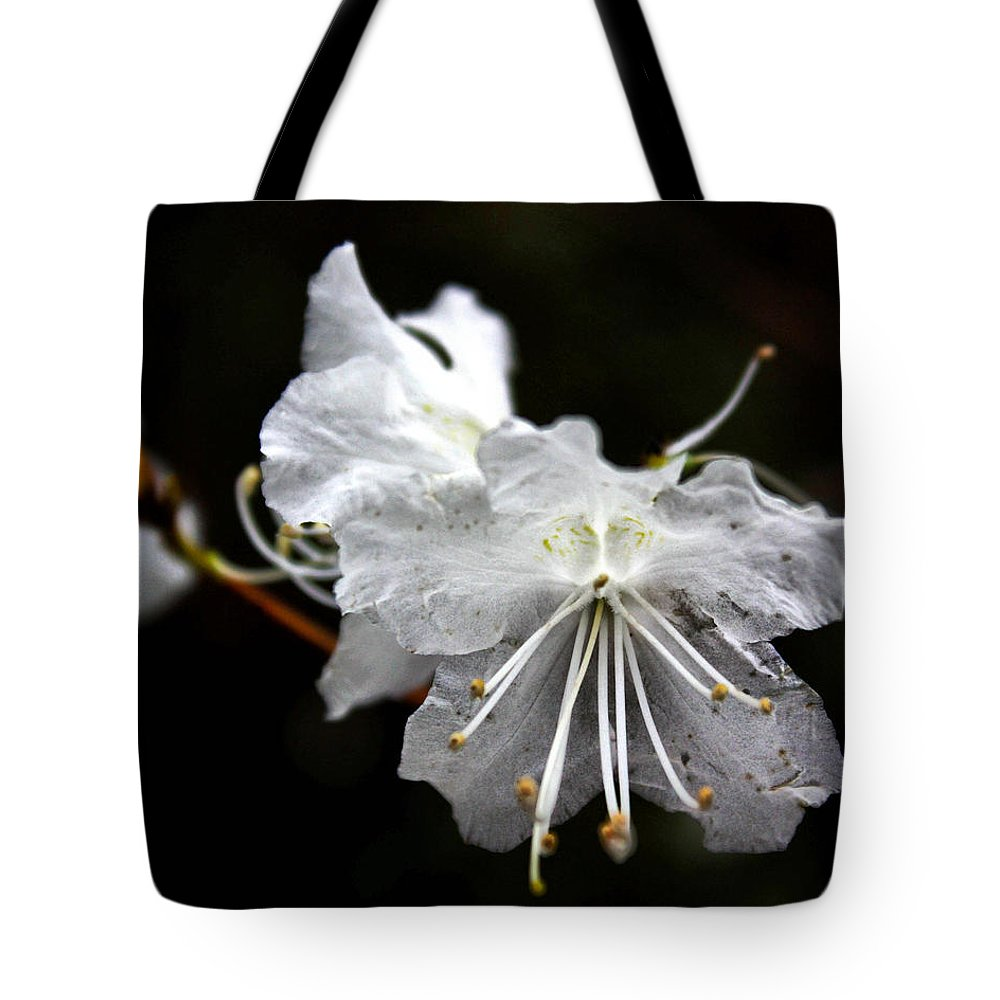 Flower Tote Bag featuring the photograph The Flower by Tim Buisman