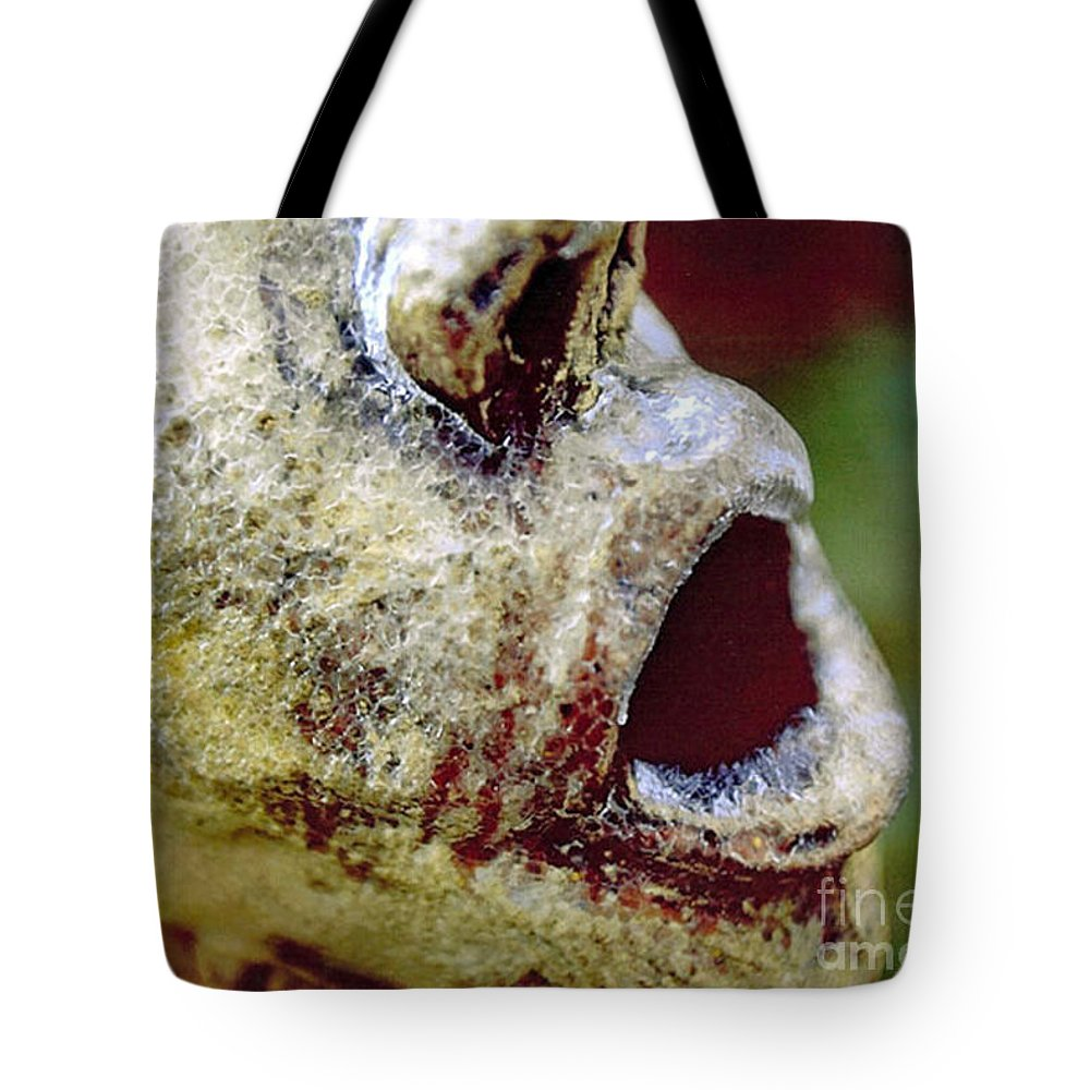Statue Tote Bag featuring the photograph The Frozen Scream by Lorenz Klug