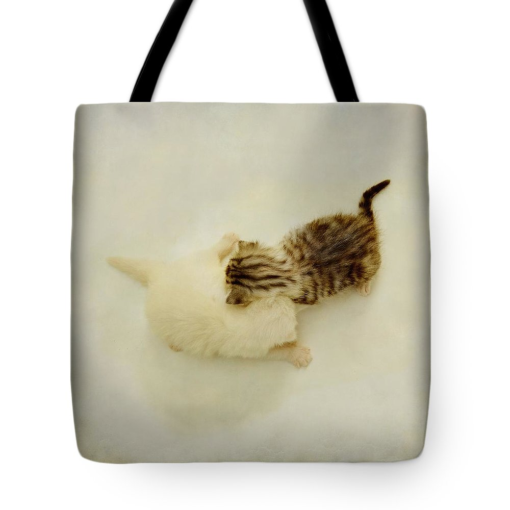 Kittens Tote Bag featuring the photograph The Game by Sonya Kanelstrand