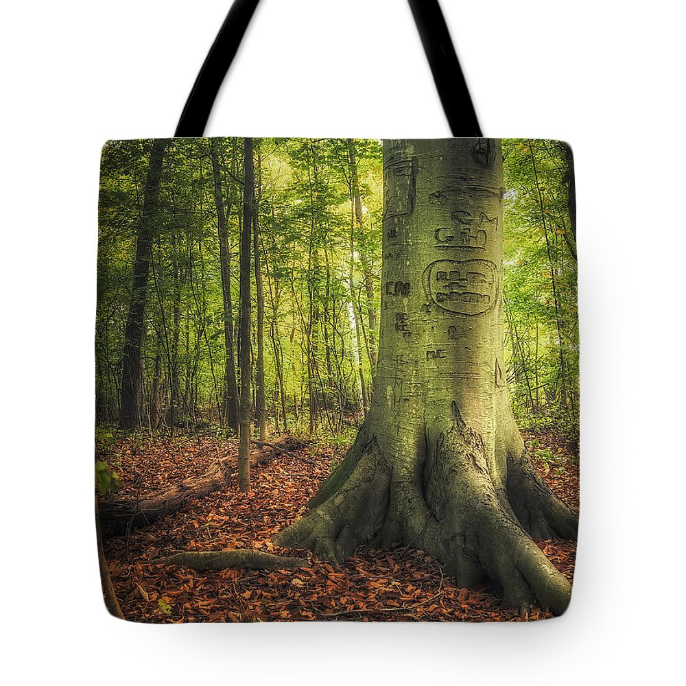 Tree Tote Bag featuring the photograph The Giving Tree by Scott Norris