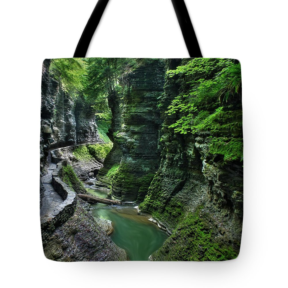 Watkins Glen Tote Bag featuring the photograph The Gorge Trail by Lori Deiter