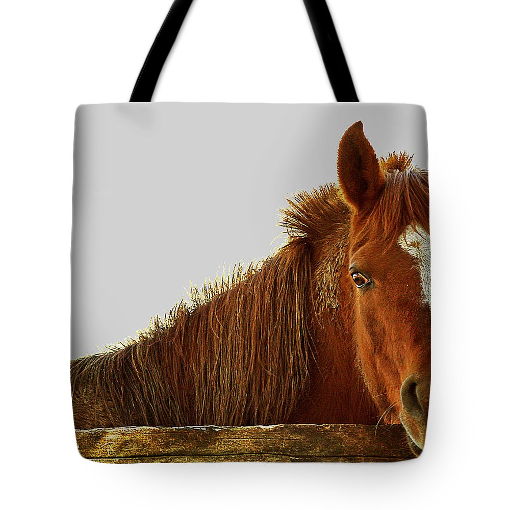 Chestnut Tote Bag featuring the photograph The Greeter by Jenny Gandert