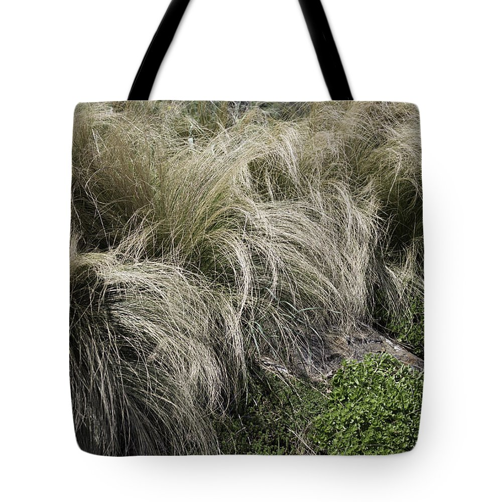 Ornamental Grass Tote Bag featuring the photograph The Hair Of Winter by Arlene Carmel