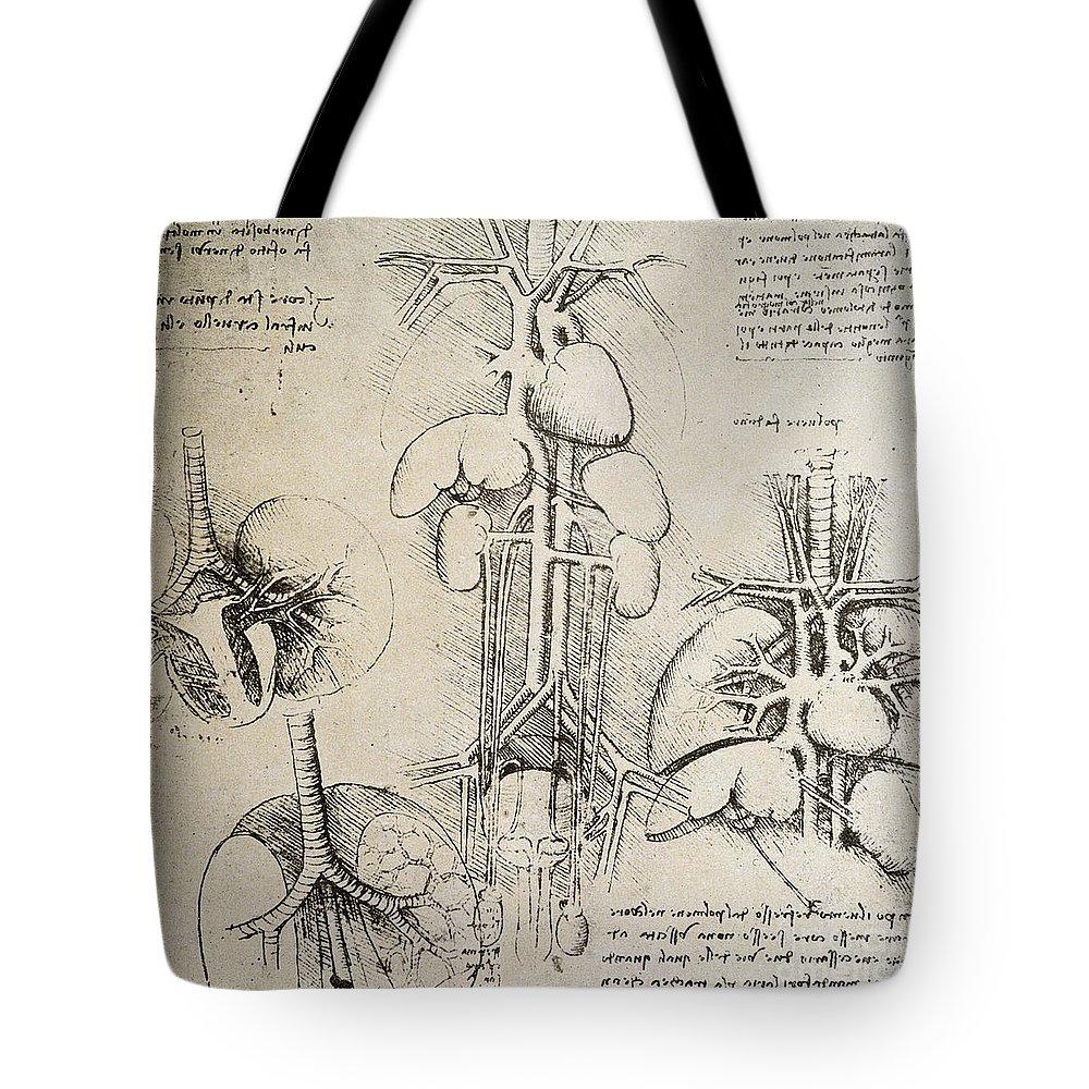 Nerves Drawings Tote Bags