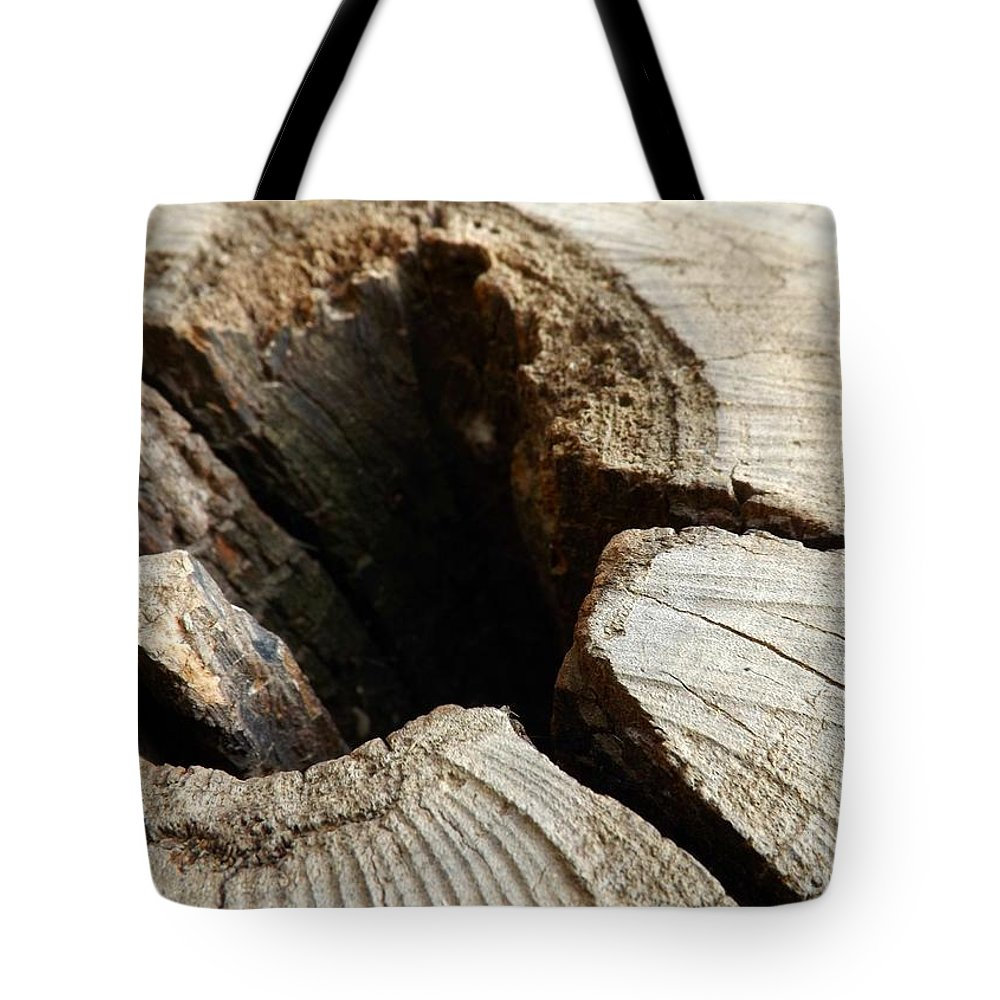 Tree Tote Bag featuring the photograph The Hole by Clare Bevan