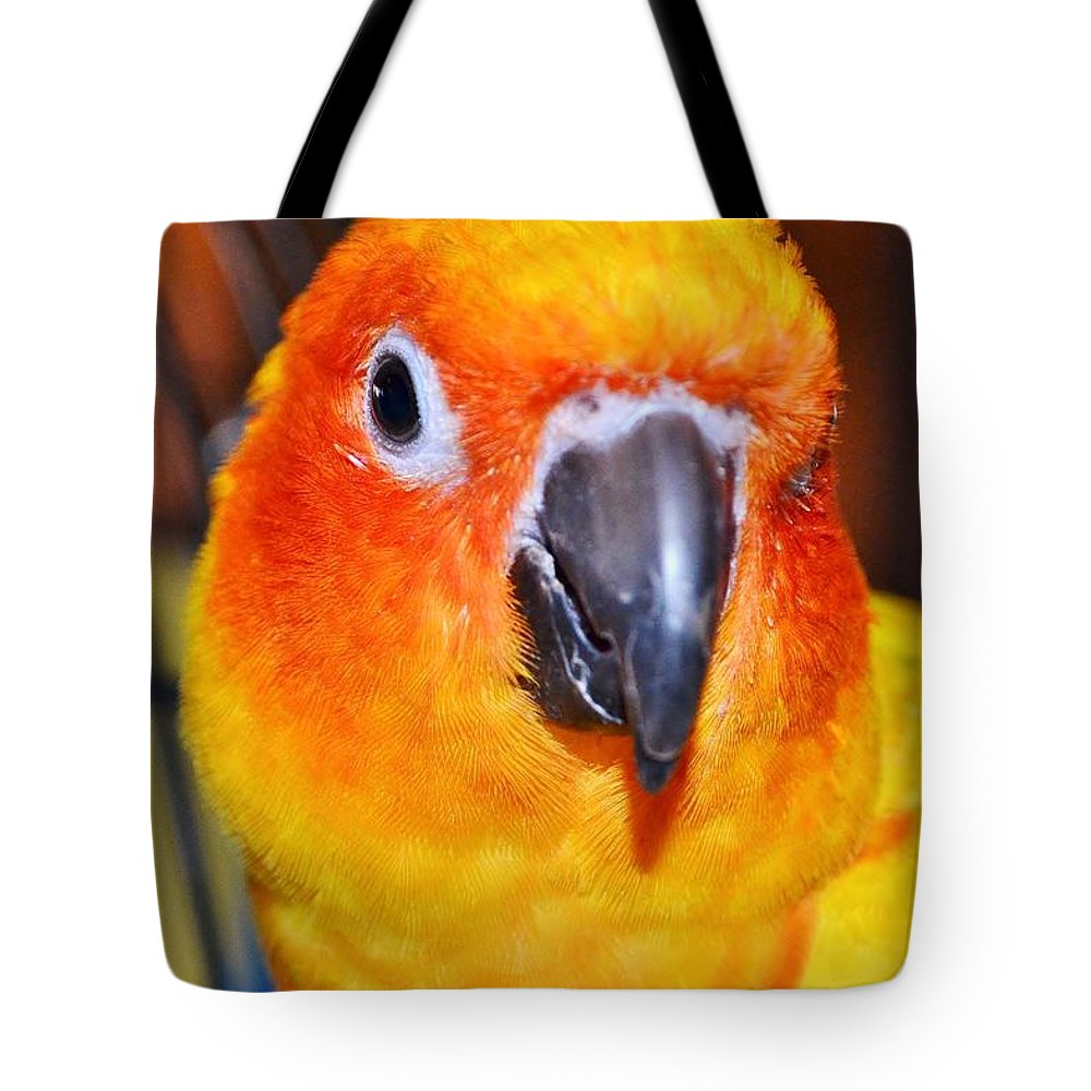 Bird Tote Bag featuring the photograph The Hotel Guest - Boardwalk Plaza Hotel - Rehoboth Beach Delaware by Kim Bemis