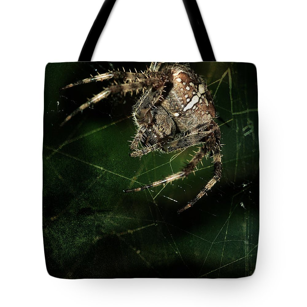Spider Tote Bag featuring the photograph The Hunter by Jaroslaw Blaminsky