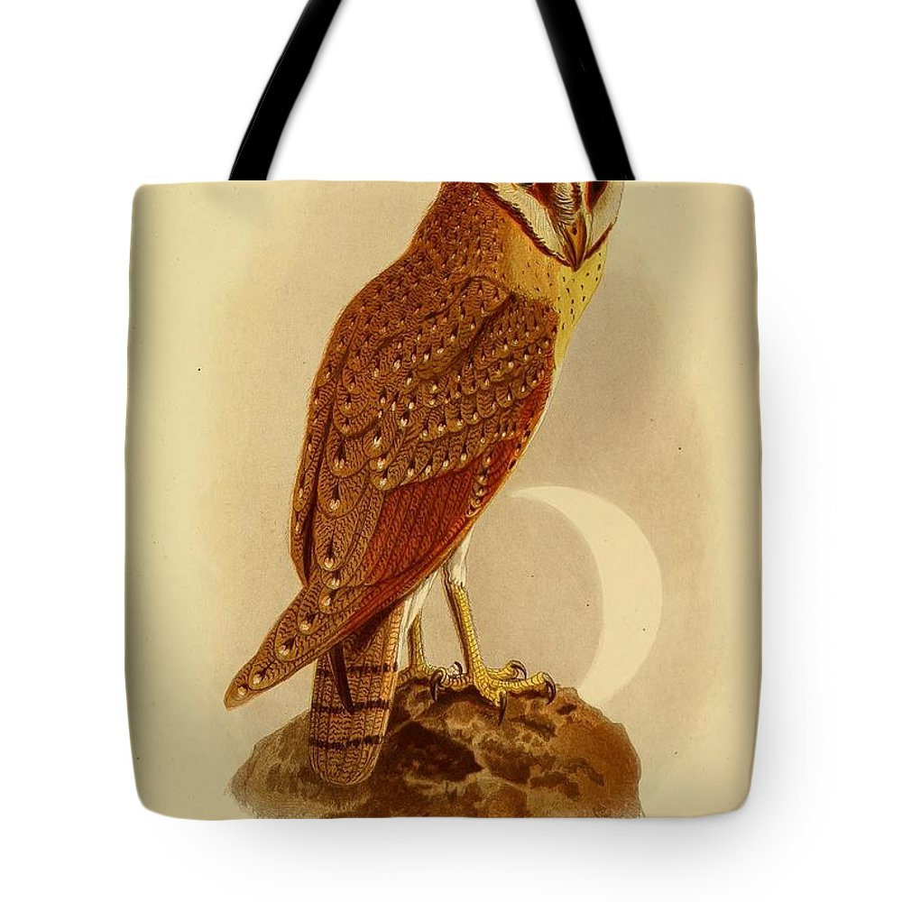 Audubon Tote Bag featuring the painting The Java Owl Cassell by Philip Ralley