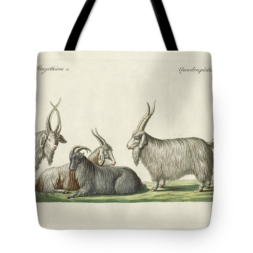 Bertuch Tote Bag featuring the drawing The Kashmir Goats Introduced In France by Splendid Art Prints