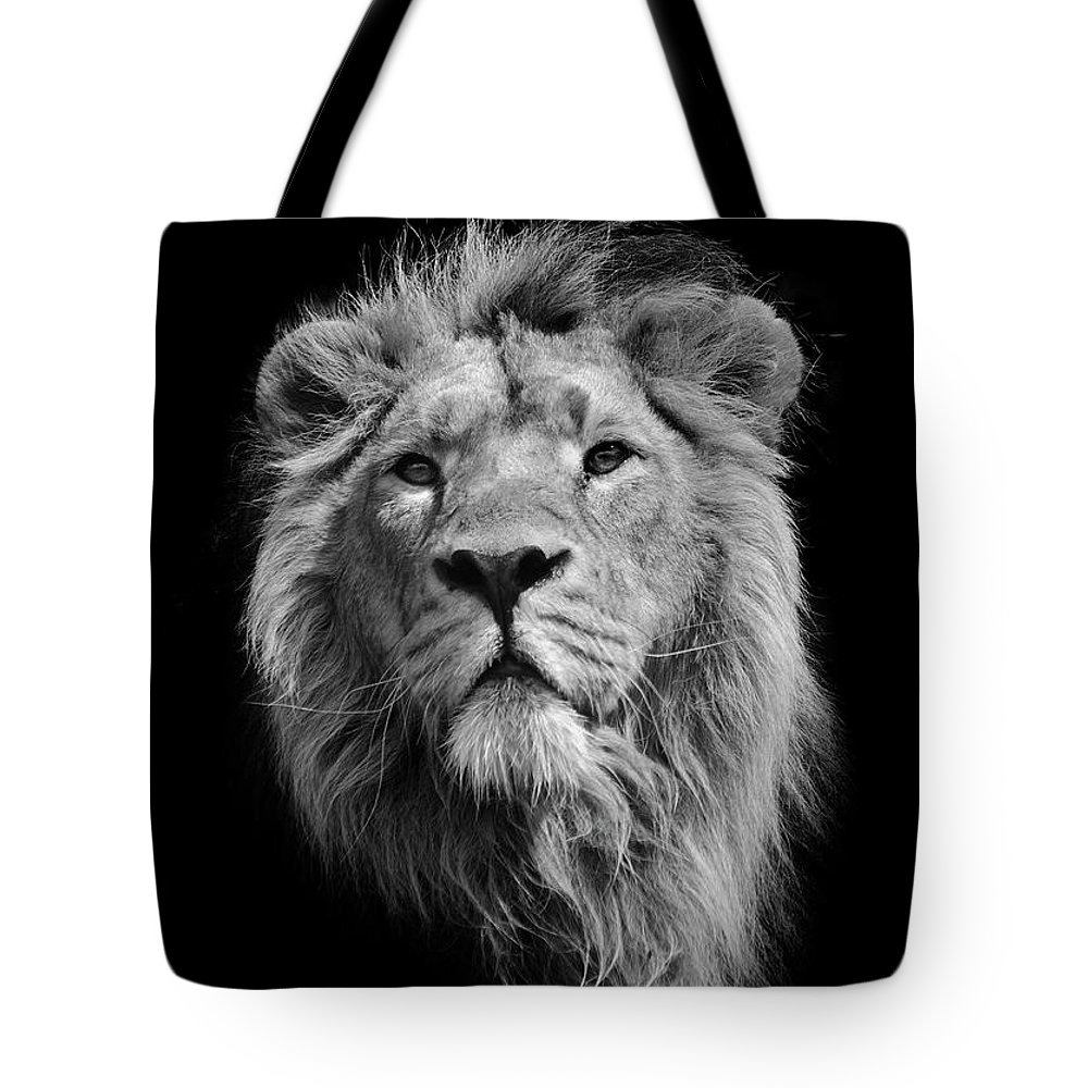 Animal Themes Tote Bag featuring the photograph The King Asiatic Lion by Stephen Bridson Photography