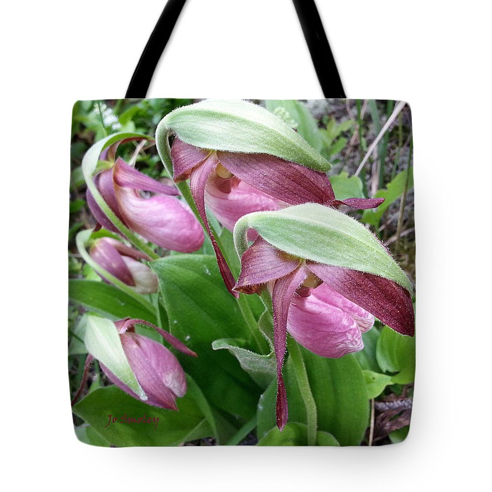 Lady Slippers Tote Bag featuring the photograph The Ladies by Joanne Smoley