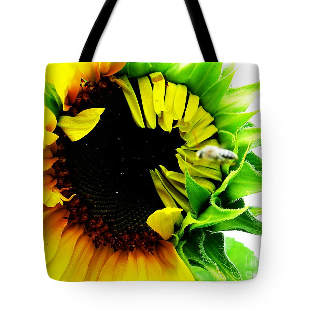 Sunflowers Tote Bag featuring the photograph The Largest Sunflower In The Garden Summer Of 2013 by Tina M Wenger