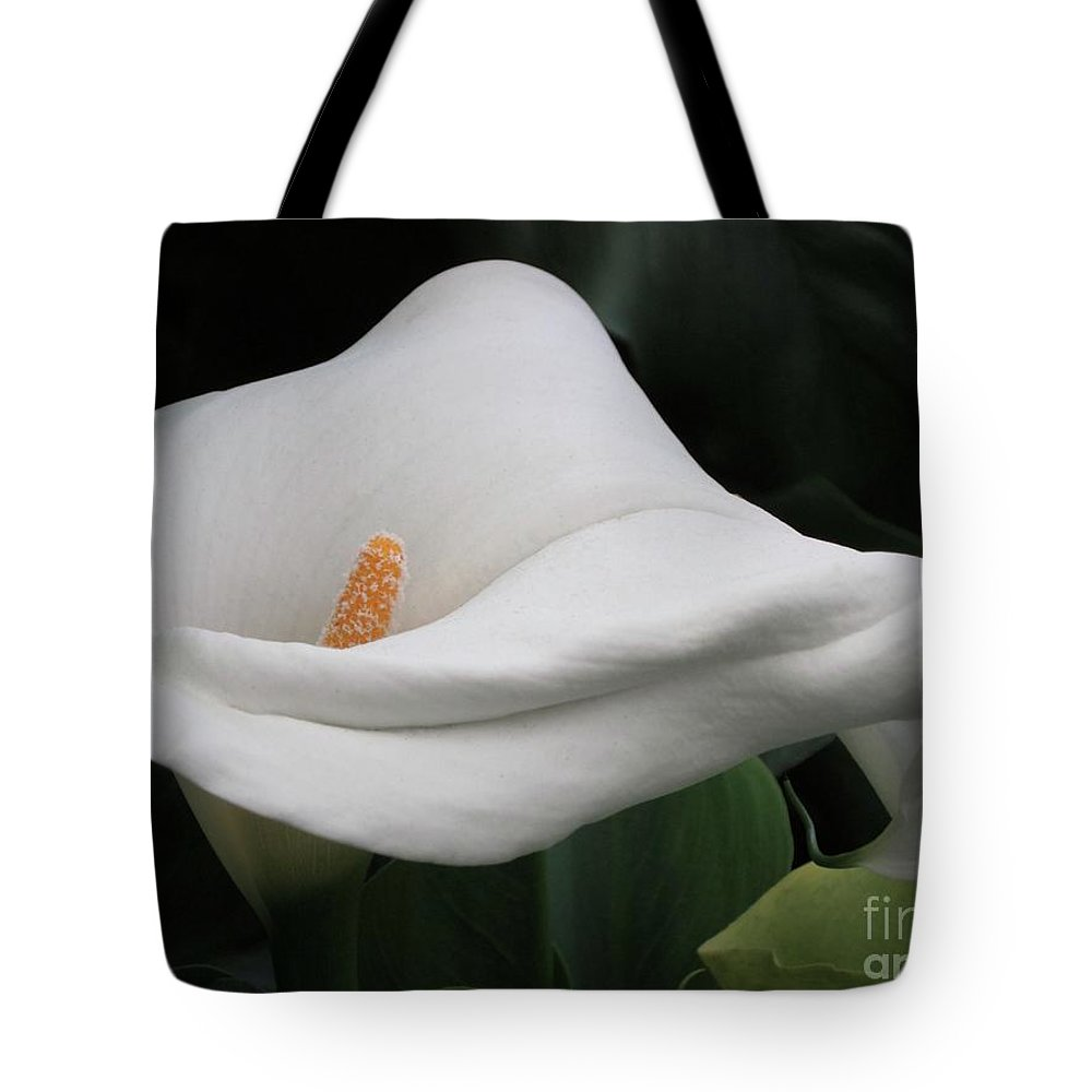 Calla Lily Tote Bag featuring the photograph The Legend Of The Calla Lily by Gwyn Newcombe