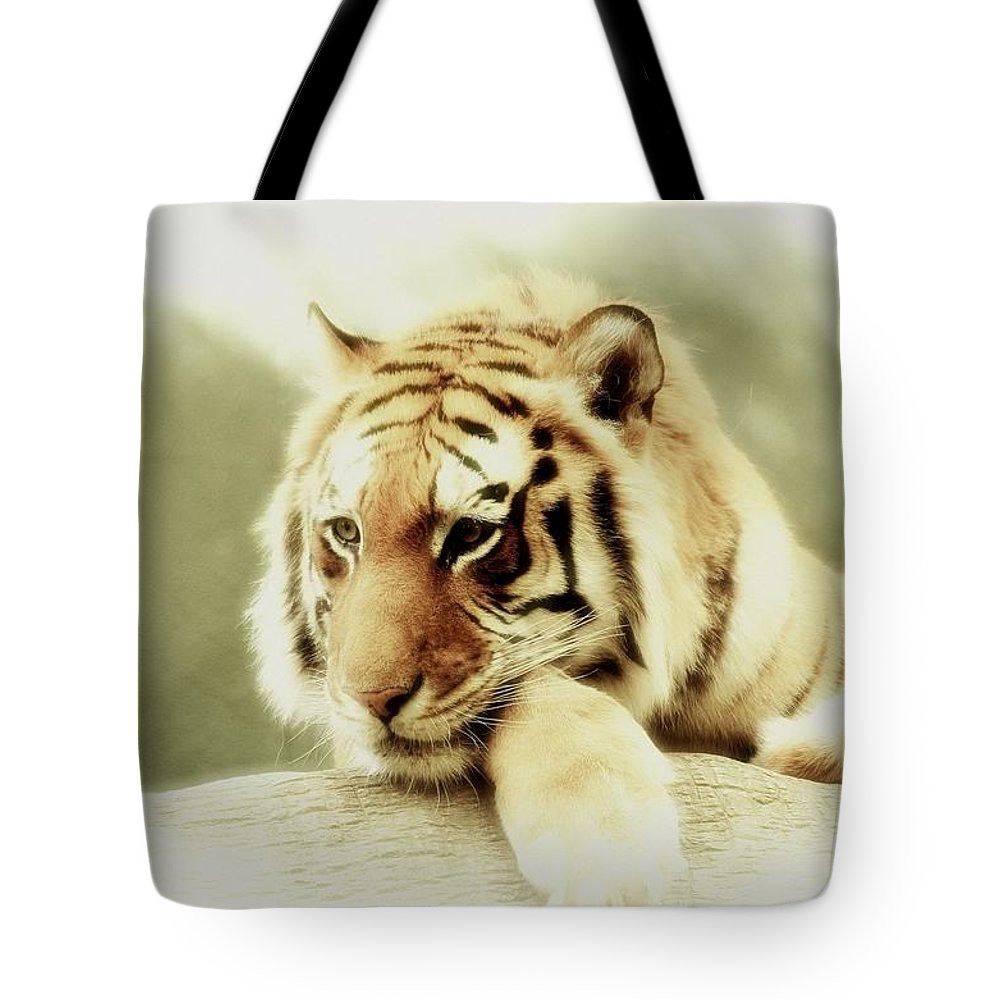 Lion Tote Bag featuring the photograph The Lion At Rest by Amanda Struz