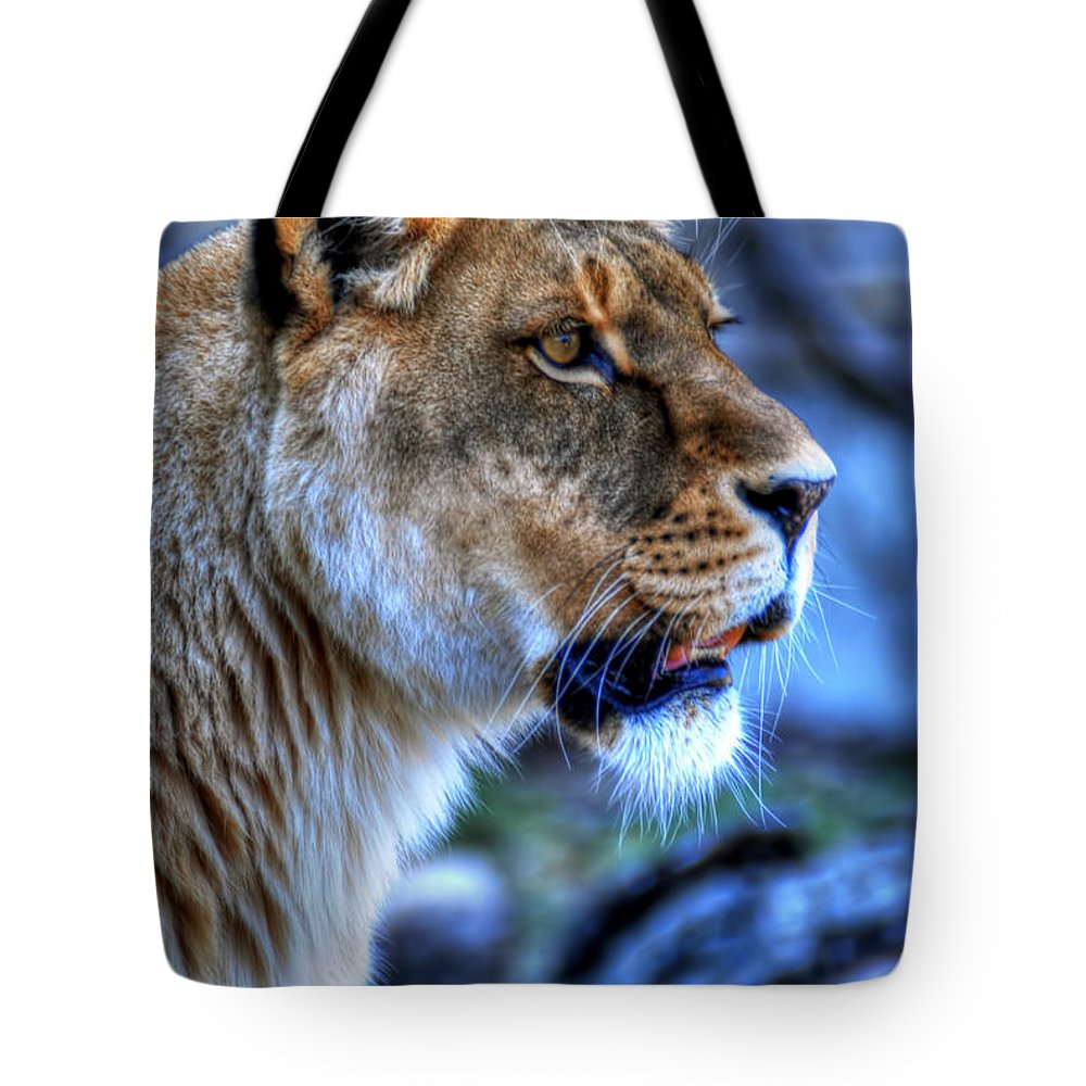 Lion Tote Bag featuring the photograph The Lioness Alert by Michael Frank Jr