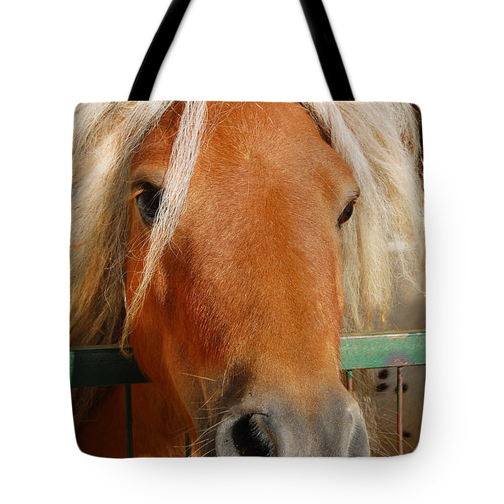 Pony Tote Bag featuring the photograph The Little Pony by Gina Dsgn