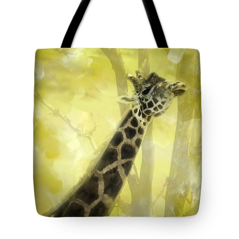 Giraffe Tote Bag featuring the photograph The Long Morning Stretch by Diane Schuster