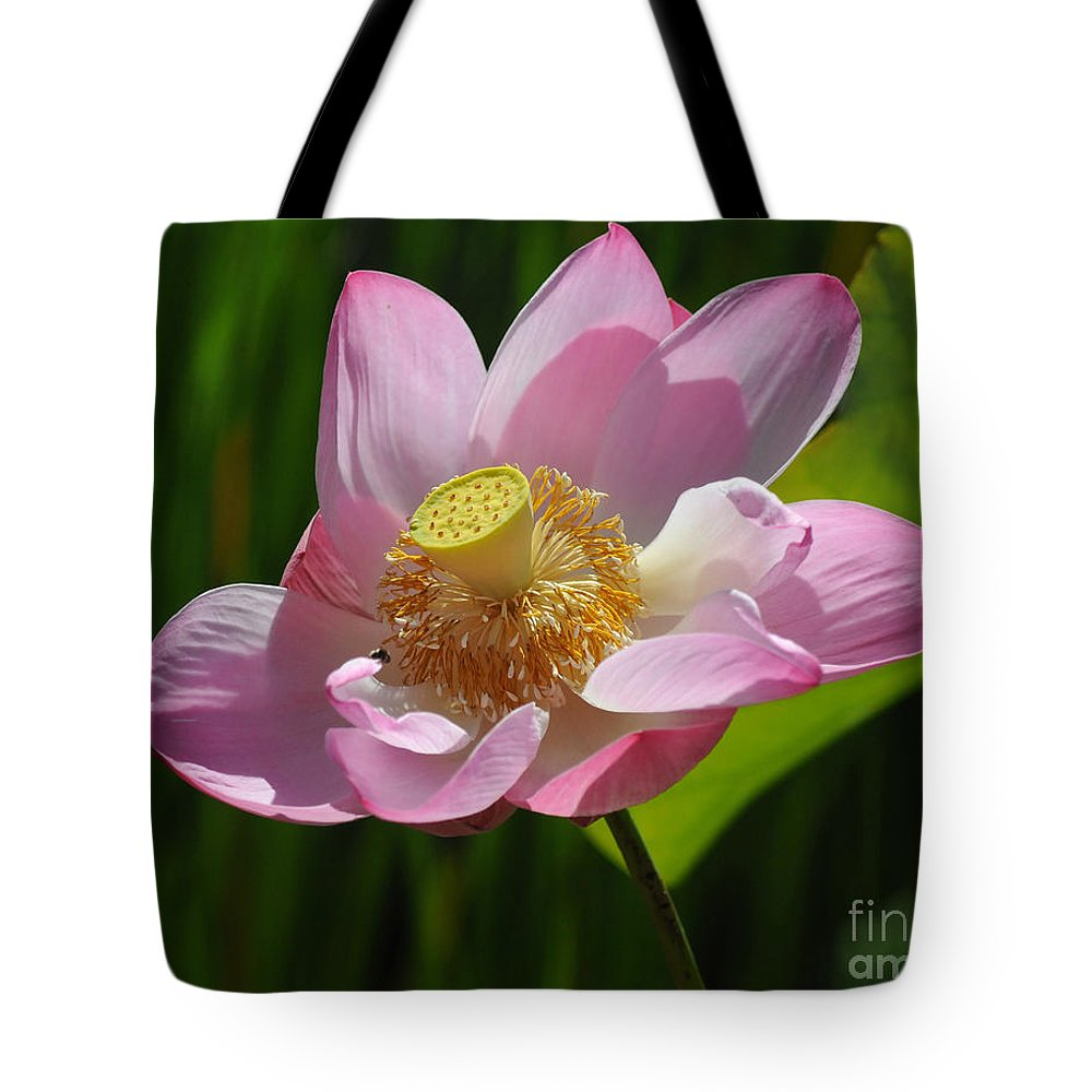 Lotus Tote Bag featuring the photograph The Lotus by Vivian Christopher