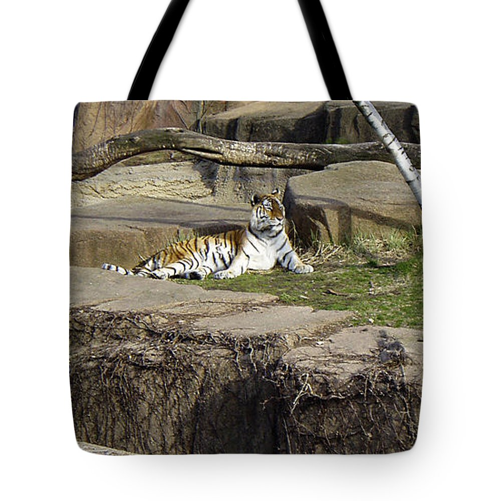 Tiger Tote Bag featuring the photograph The Lounging Tiger 2 by Verana Stark